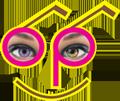 Lee's Optical Co Ltd logo