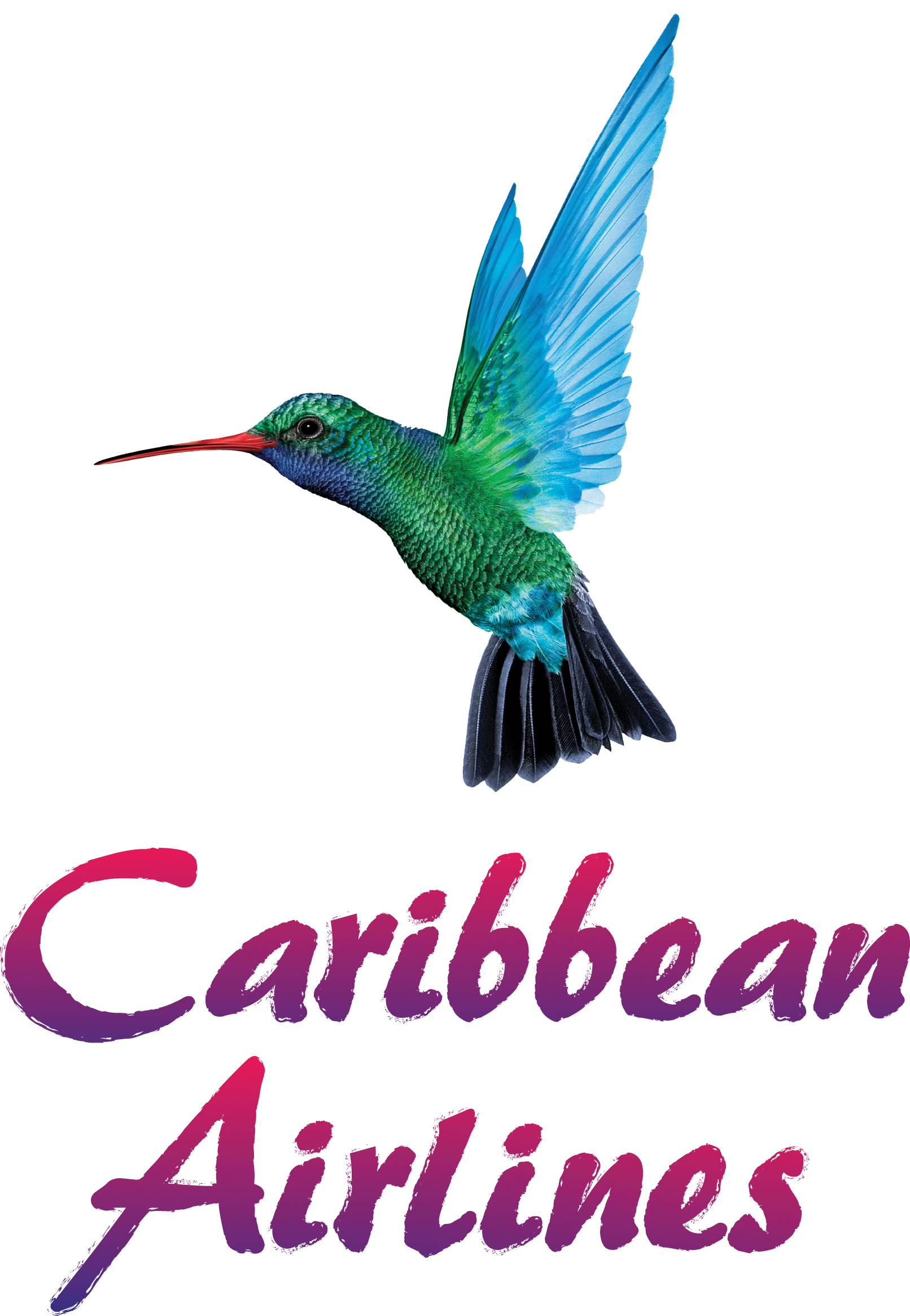 Image result for caribbean airlines logo0""